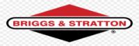 Briggs Stratton Logo 1